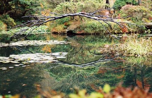 池のオブジェ